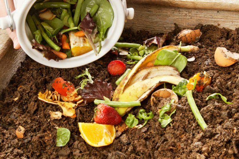Réunion d'information compostage