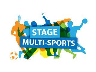 Multisports, un stage d'été
